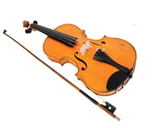 Violin Sports - Adelaide Schools